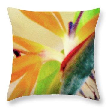 Birds Bromeliads Halyconia 2 Throw Pillow