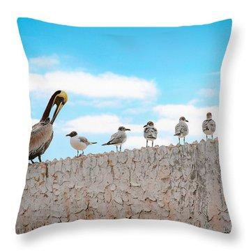 Birds Catching Up On News Throw Pillow