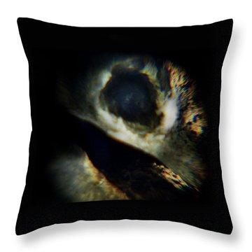 Bird's Eye Throw Pillow