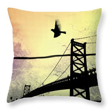 Birds Eye View Throw Pillow by Bill Cannon