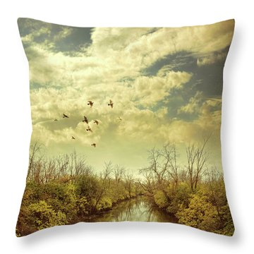 Birds Flying Over A River Throw Pillow by Jill Battaglia