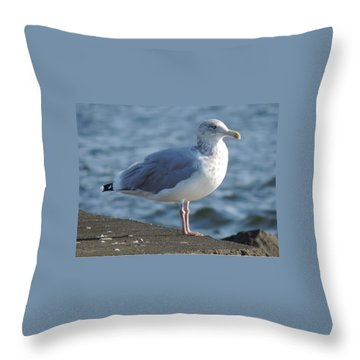 Birds In The Air  Throw Pillow