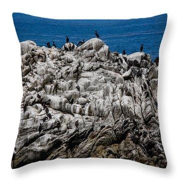 Bird's Island Throw Pillow