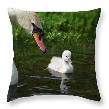 Birds Of Feather... Throw Pillow