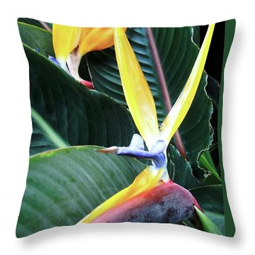 Birds Of Paradise With Leaves Throw Pillow