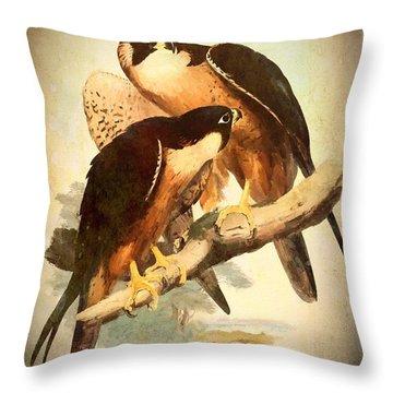Birds Of Prey 2 Throw Pillow