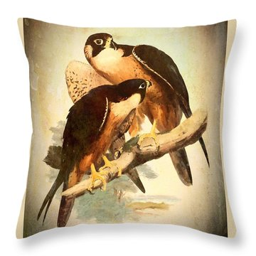 Birds Of Prey 2 Throw Pillow