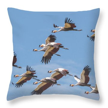 Birds Of The Same Feather. Throw Pillow