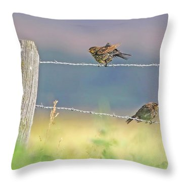 Throw Pillow featuring the photograph Birds On A Barbed Wire Fence by Jennie Marie Schell