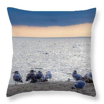 Throw Pillow featuring the photograph Birds On A Beach by Kendall McKernon