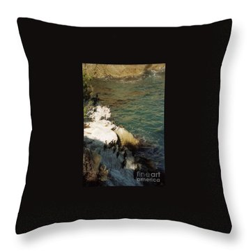 Birds On Rock Above Pacific Ocean Throw Pillow by Ted Pollard