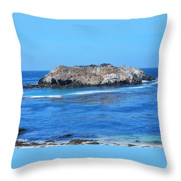Bird Rock Throw Pillow