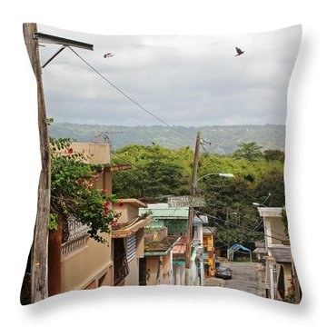 Birds Over Yabucoa Throw Pillow