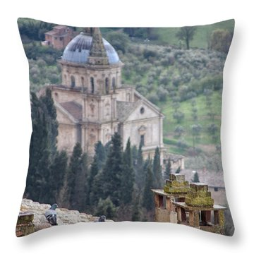 Birds Overlooking The Countryside Throw Pillow