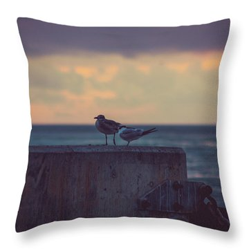 Birds Throw Pillow by Scott Meyer