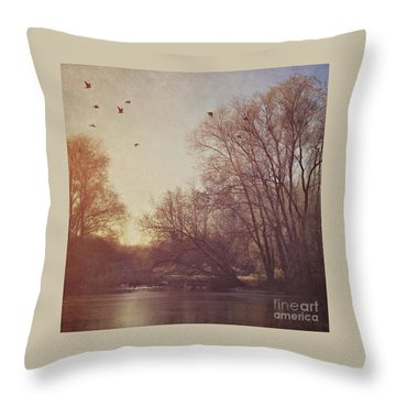 Throw Pillow featuring the photograph Birds Take Flight Over Lake On A Winters Morning by Lyn Randle