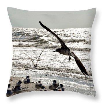 Birds World Throw Pillow