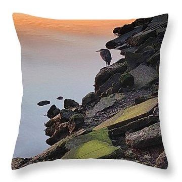 Birdseye View Throw Pillow