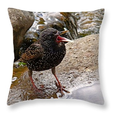 Birdsong Throw Pillow by Rona Black