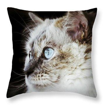 Birdwatching Throw Pillow by Karen Stahlros