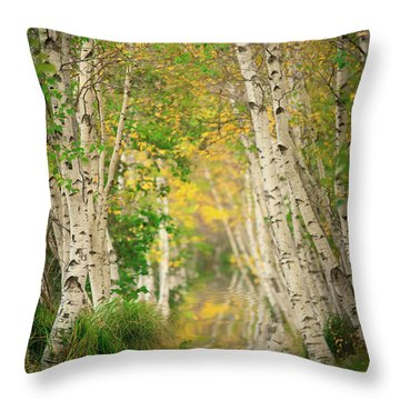 Throw Pillow featuring the photograph Birtch Row  by Emmanuel Panagiotakis