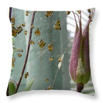 Birth Of A Spider Throw Pillow by Pamela Patch