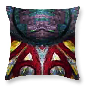Birth Place Throw Pillow