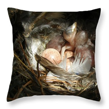 Throw Pillow featuring the photograph Birthday Spotlight by Angie Rea