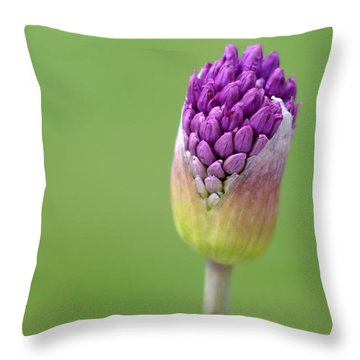 Throw Pillow featuring the photograph Birthing Springtime by Linda Mishler