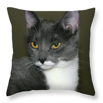 Throw Pillow featuring the photograph Biscuit by Doris Potter
