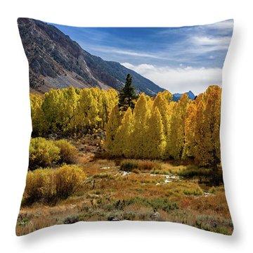 Bishop Creek Aspen Throw Pillow