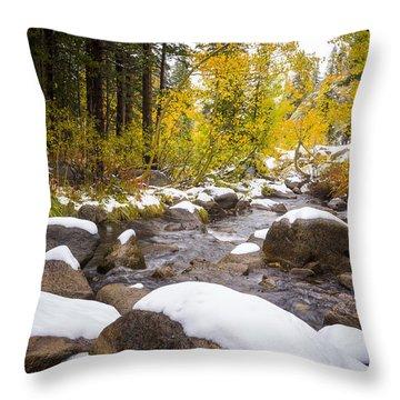 Bishop Creek Throw Pillow by Joe Doherty