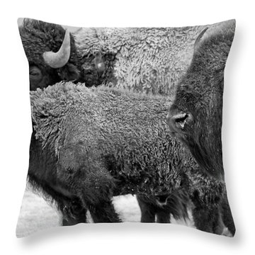 Bison - Way Out West Throw Pillow by Melany Sarafis