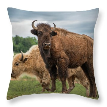 Throw Pillow featuring the photograph Bison 10 by Joye Ardyn Durham