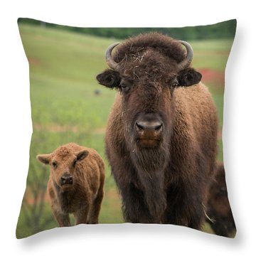 Throw Pillow featuring the photograph Bison 4 by Joye Ardyn Durham