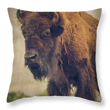 Throw Pillow featuring the photograph Bison 8 by Joye Ardyn Durham