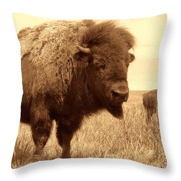 Bison And Calf Throw Pillow