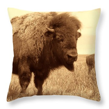 Bison And Calf Throw Pillow