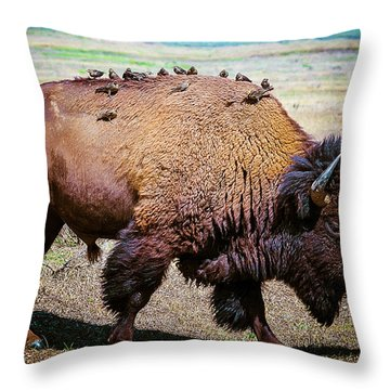 Throw Pillow featuring the photograph Bison And The Birds by Mary Hone