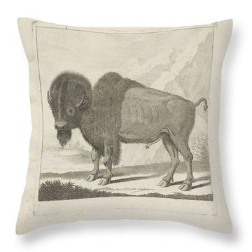 Bison, Anonymous, After Gerrit Van Den Heuvel, 1735 - 1859 Throw Pillow