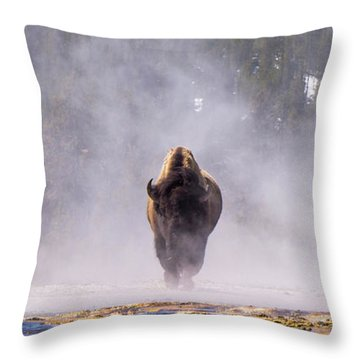Bison At Biscuit Basin Throw Pillow