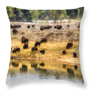 Bison At Indian Pond Throw Pillow
