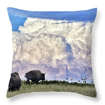 Bison Country Throw Pillow