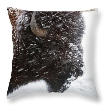 Bison In Snow Throw Pillow