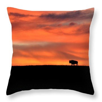 Bison In The Morning Light Throw Pillow