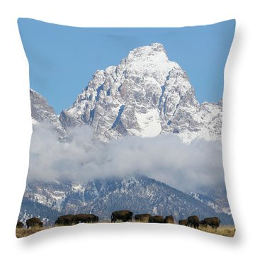 Bison In The Tetons Throw Pillow