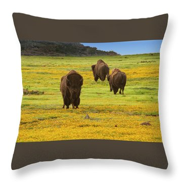 Bison In Wildflowers Throw Pillow