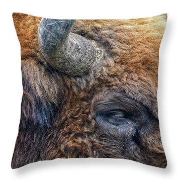 Bison Throw Pillow