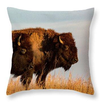 Bison Pair Throw Pillow