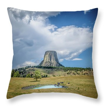 Bison Pond Throw Pillow